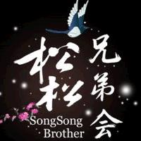 松松兄弟会在卢松松博客的专栏