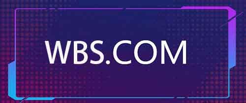 价值百万的三声母域名WBS.com被盗 微新闻 第1张